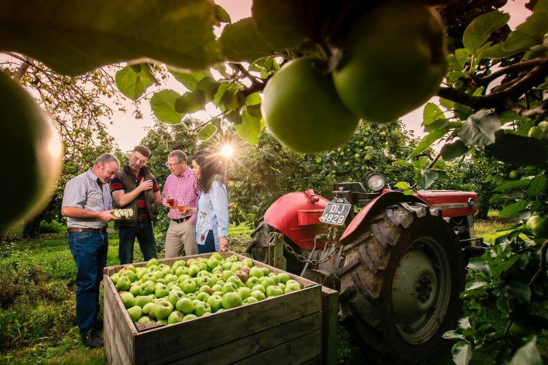 Long Meadow Cider, Co. Armagh - Farm Tours