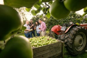 Long Meadow Cider, Co. Armagh - Food & Cider Festival
